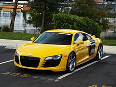 Audi R8 (Exotic Car Life) Tags: fastcar exoticcar audir8 1of2 rarecolor exoticcarlife