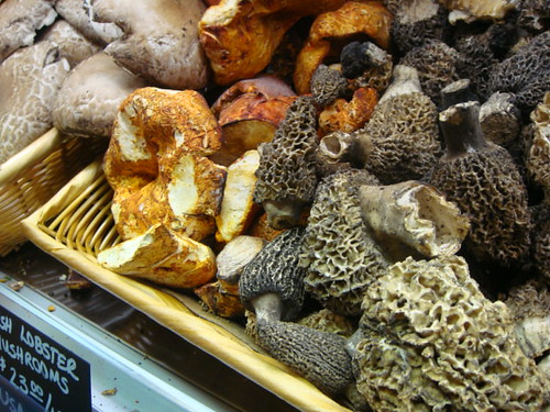 Exotic Mushrooms at Eataly