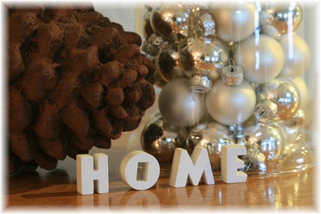christmas2010 122 (640 x 427)