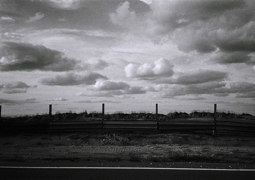 niigata monochrome film 20