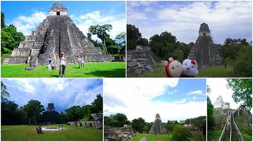 提卡爾金字塔Tikal5