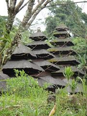 DSC00494 (Mathieu Castel) Tags: bali indonesia temple pura batukaru luhur