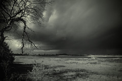 Dark skies over Holland (Mighty Maik) Tags: light sky holland netherlands landscape licht dramatic landschap keizer maik