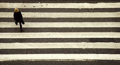Zebra (Alberto Sen (www.albertosen.es)) Tags: nikon europa europe carretera sweden stockholm alberto estocolmo suecia sen d80 albertorg