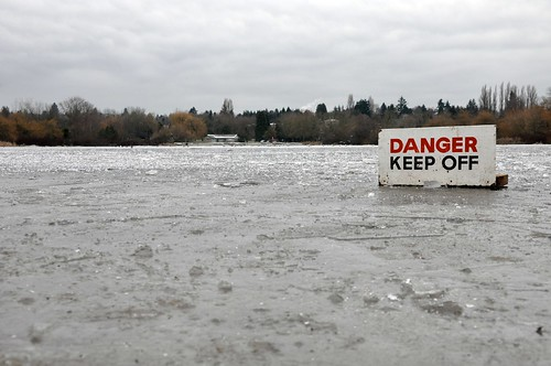 Trout Lake, Vancouver 11