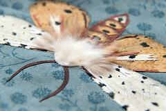 Moth appliqe 3 (ShapeMoth) Tags: brown gray moth fabric saltmarshmoth rawedgeapplique shapemoth