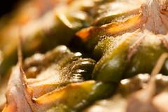 Pineapple macro (Miggeli) Tags: macro fruit pineapple makro ananas frucht
