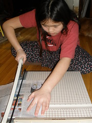 Volunteer - Cut Paper for Animal Cages