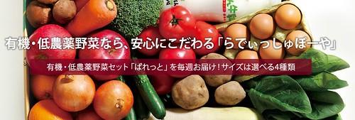 無農薬野菜 らでぃっしゅぼーや 画像1