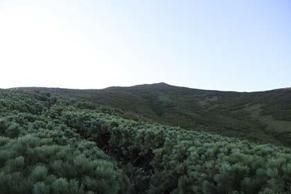鴛泊登山道