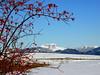 SAVOIE - Plateau de la Féclaz - An arrière plan, La Tournette, dominant Annecy (pleymo_05) Tags: httpballoonaprivatthumbloggercom