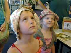 Minibeasts at Altona Library
