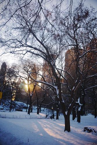 Central Park - Manhattan Half