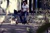 کافه نادری (Mohammad Reza Hassani) Tags: cats man cafe feed tehran تهران naderi کافه نادری postaday2011