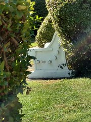 HBM!  BENCH MONDAY THROUGH THE BUSHES! (Visual Images1) Tags: hbm benchmonday rainbow bench bushes green white