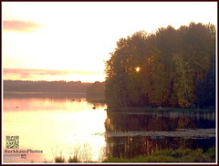 Sunset (PeepeT) Tags: autumn syksy syyskuu septemper lake jrvi sunset auringonlasku pyhjrvi