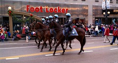 Chicago's finest in parade. (Cragin Spring) Tags: thanksgiving street city horses people urban chicago illinois midwest holidays cops police parade law crowds lawenforcement patrol