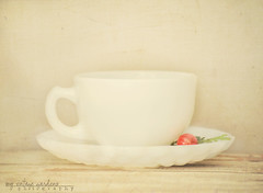 cup of Christmas love (denisemasygaphotography) Tags: christmas white texture love cup vintage cupofchristmaslove