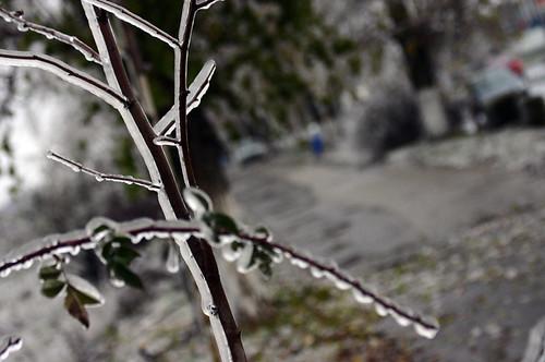 privire-spre-iarna