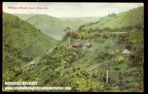 aibonito county Find aibonito county, pr apartment rentals on realtorcom® get aibonito county apartments for rent rental listings, great photos and more today.