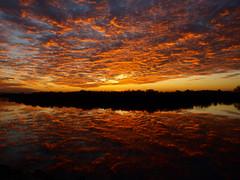 Bay Area Sunset (Original, Unmodified) (jhhwild) Tags: sunset orange water sunrise reflections bay area unedited