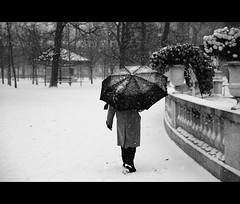 Paraneige (HubHamy) Tags: city winter white snow black paris france garden french hiver nieve jardin luxembourg niege