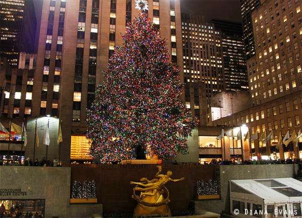December 5th 2010 392