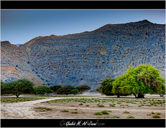 Sumur Trees #1 (al-Jazmi) Tags: sky mountain photoshop mideast lightroom khasab 550d deserttree ghaleb    jazmi  eos550d rebelt2i kissx4 canonkissx4 aljazmi  sumurtree