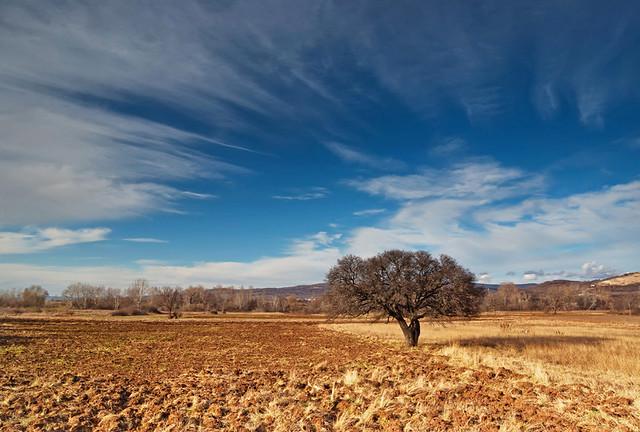 Pejzaži i prirodne lepote Zemlje 5248756491_9a7515d869_z