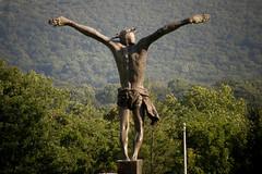 Christ and the Greenery (Mark Luethi) Tags: statue forest back crucifix jesuschrist bluearmyshrine