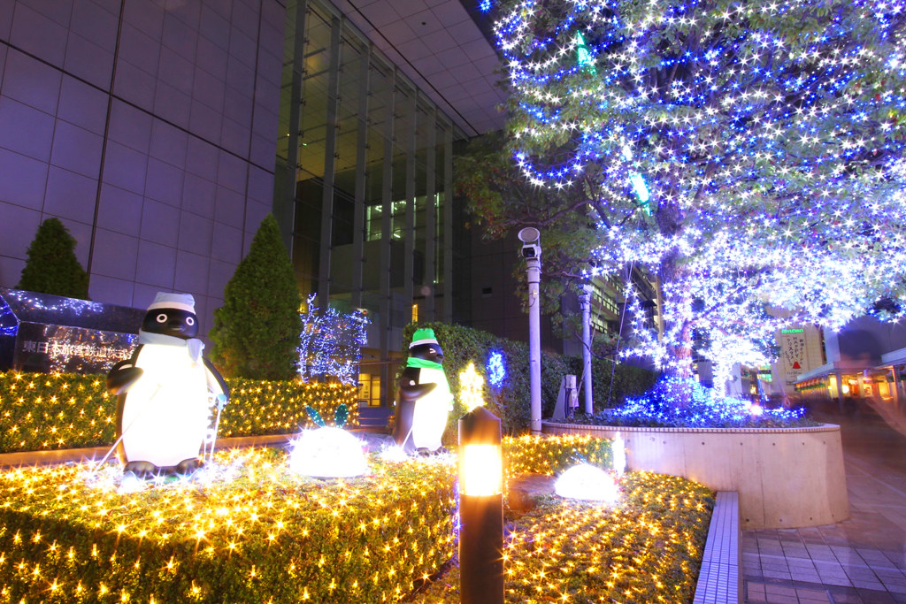 Shinjuku Xmas illumination 2010 (5)