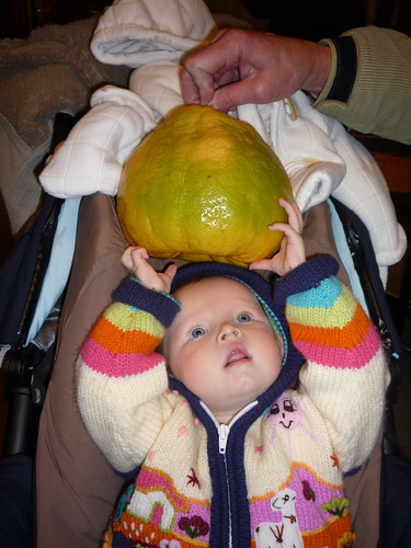 Nora and the Giant Lemon