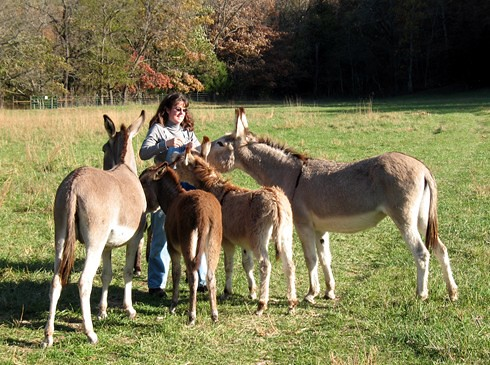 Susan and donkeys for About page