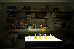 DIY lab bench (DaveMosher) Tags: newyorkcity science laboratory biotechnology sciencelab diyscience diybio genspace metropolitanexchange