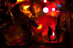 (/\/\\/\//\/\\/\//\/\\/\/) Tags: christmas winter usa america photography photo nikon invierno      fuyu     d5000
