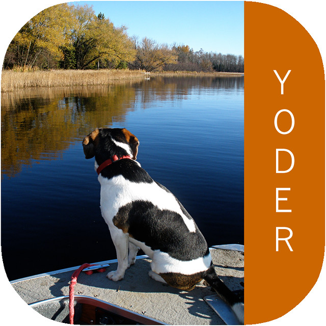 yodor2