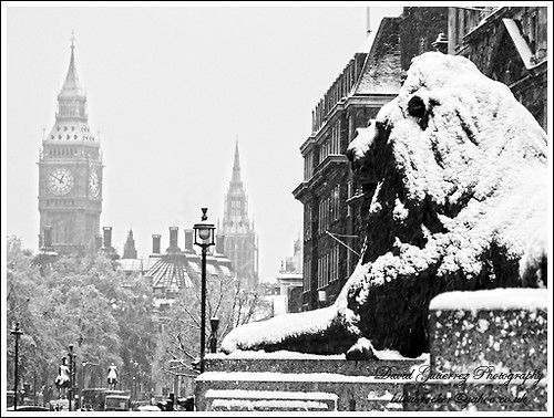 Snow by david gutierrez [ www.davidgutierrez.co.uk ]