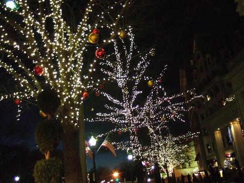 Pre-Christmas 033