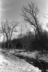 Winter creek 6 (hpulley) Tags: winter blackandwhite film waterloo expired ilforddelta400 canonftbn ilfotecddx ilfostop ilfordrapidfixer yellow8filter ilfotol canonfd35mmf2sscii