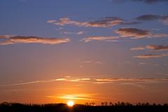sunrise - yesterday (peet-astn) Tags: trees sky cloud sun alberi sunrise dawn day alba cielo sole nebbia pwpartlycloudy