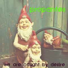 Zwergenparty (29035a1ada76e8aca127c9b0a9ce3b5f) Tags: cute garden gnome olympus amelie garten picnik niedlich ep1 rote zwerge gartenzwerge travelinggnome zipfelmützen gartenzubehör olympusep1 silkelarium zwergenparty