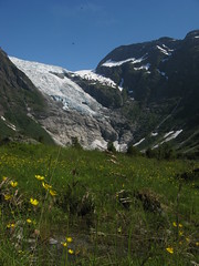 Byabreen / Fjrland (Florafreak) Tags: ice norway norge wilde meadow glacier valley fjord wildflowers bloemen glace ijs buttercups noorwegen norske norja boterbloemen fjrland norvge byabreen vallei gletjes