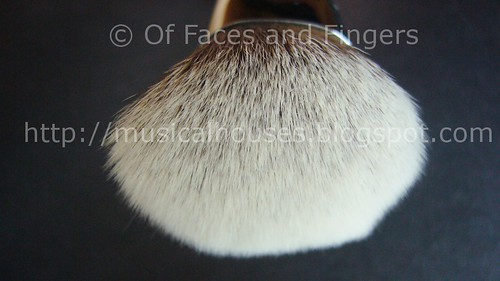 sigma angled top kabuki F84 bristles
