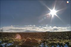 Winter fields (victor*f) Tags: blue sky sun field mud earth zurich hills soil flare uetliberg hdr clods photomatix singlephotohdr