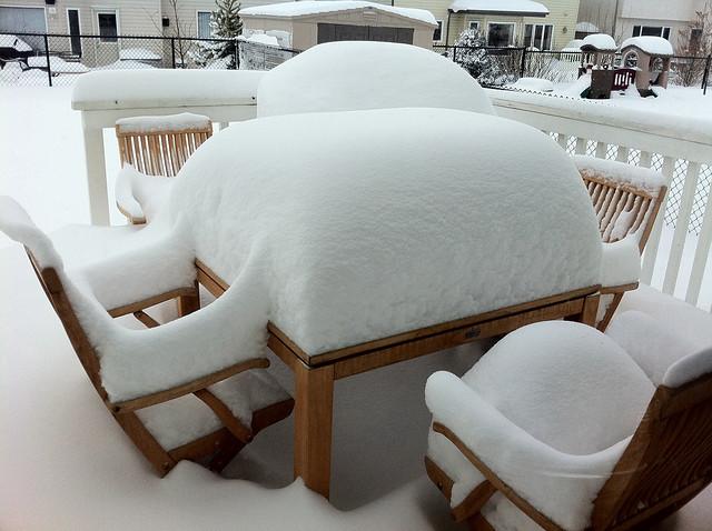 Jan 9, 2011 Snow