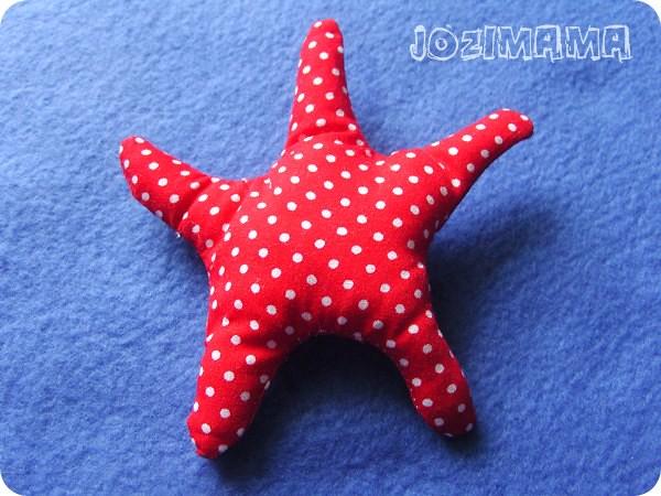rozgwiazda / starfish