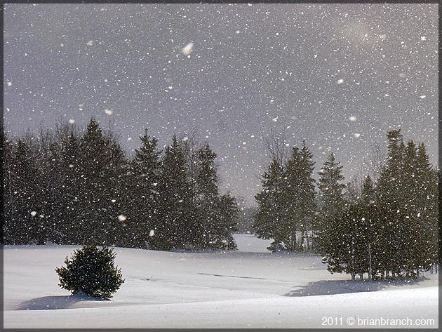 P1130665_snow