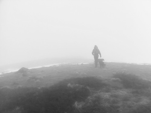 Into the Mist...