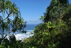 DSC_0133 (johnhane) Tags: temp park travel outdoors hawaii january delete hike trail kauai kalalau napali napalicoast 2011 kalalautrail haenastatepark