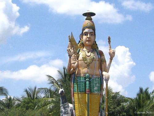 முருகன் சிலை... statue of murugan